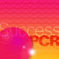 Takara PCR