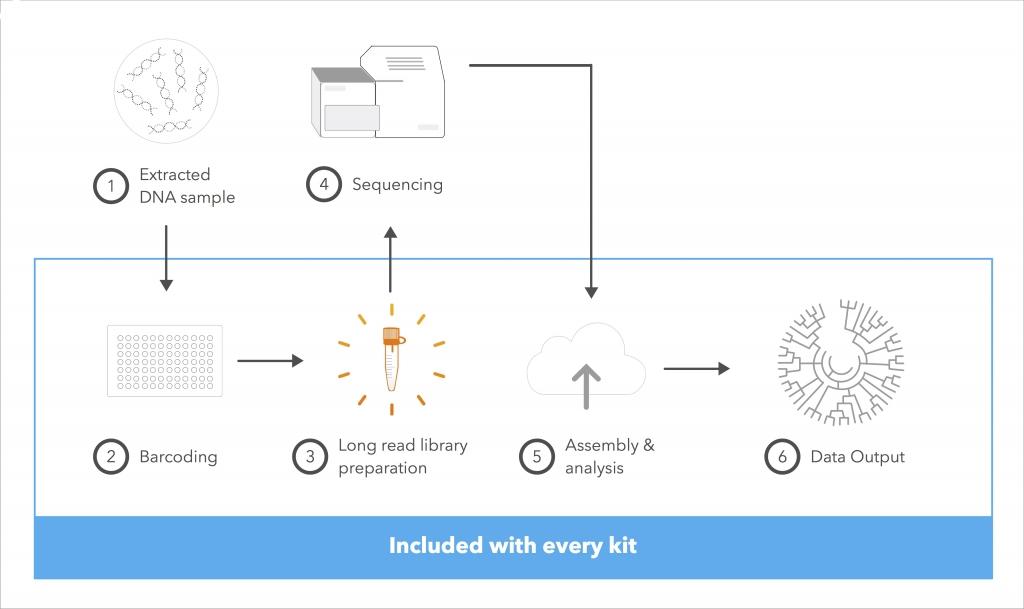 Loop genomics worfkflow